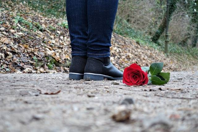 Red Rose On The Floor Love Sad - Free photo on Pixabay (99690)