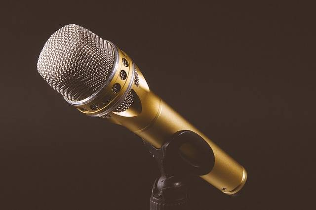 Microphone Mic Mike - Free photo on Pixabay (111034)