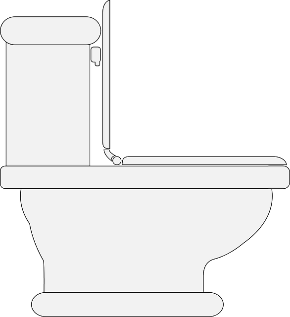 Toilet Restroom Lavatory - Free vector graphic on Pixabay (112990)