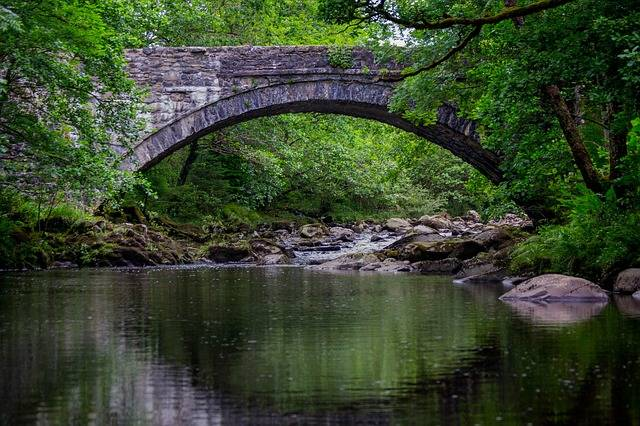 Coed Y Brenin Bridge Landscape - Free photo on Pixabay (113002)