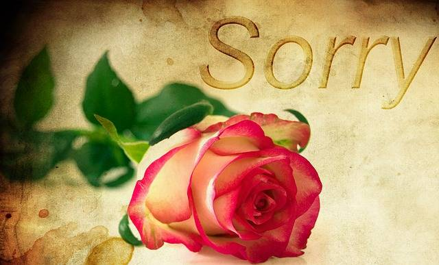 Rose Background Excuse Me Red - Free photo on Pixabay (113489)