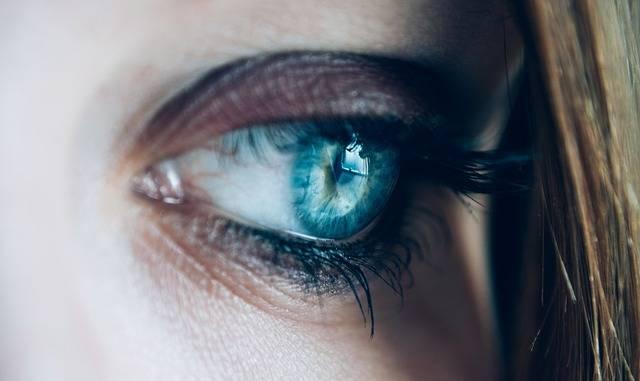 Close-Up Eye Eyelashes - Free photo on Pixabay (119214)