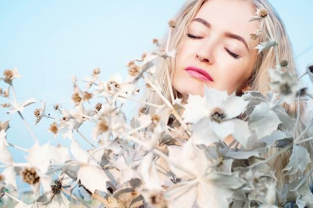 Sun Flowers Girl Woman - Free photo on Pixabay (121824)
