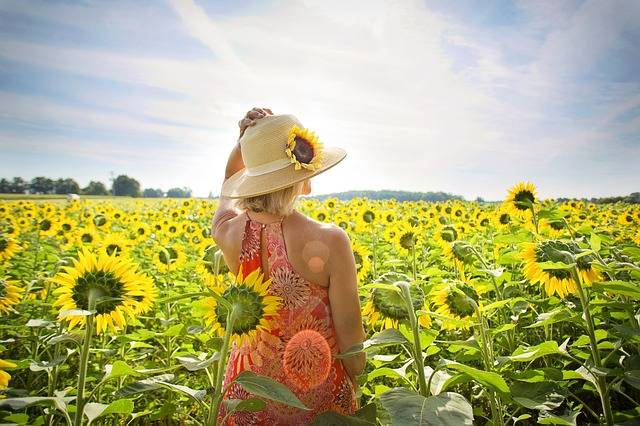 Sunflowers Field Woman - Free photo on Pixabay (125806)