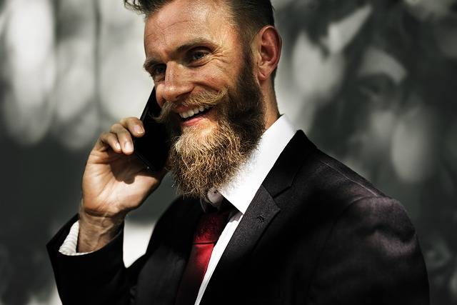 Beard Business People - Free photo on Pixabay (128130)