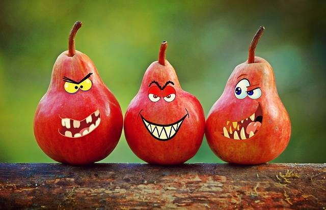 Pears Faces Grimassen - Free image on Pixabay (131523)