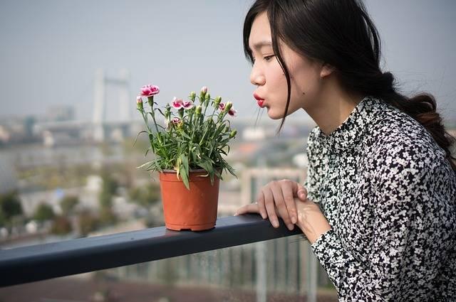 Portrait Photography Woman - Free photo on Pixabay (136789)