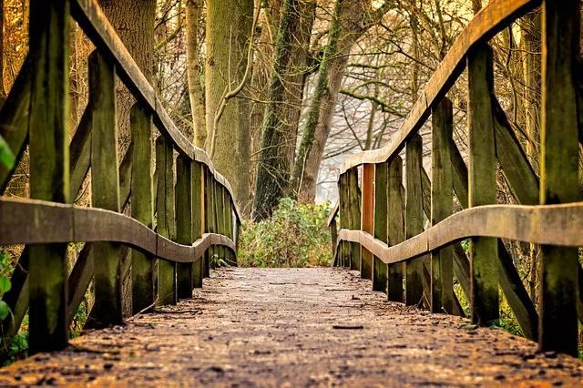Away Bridge Wood - Free photo on Pixabay (139801)