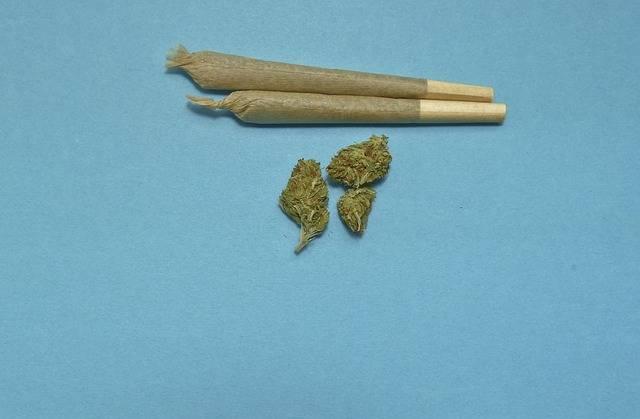 Marijuana Medical Weed - Free photo on Pixabay (148070)