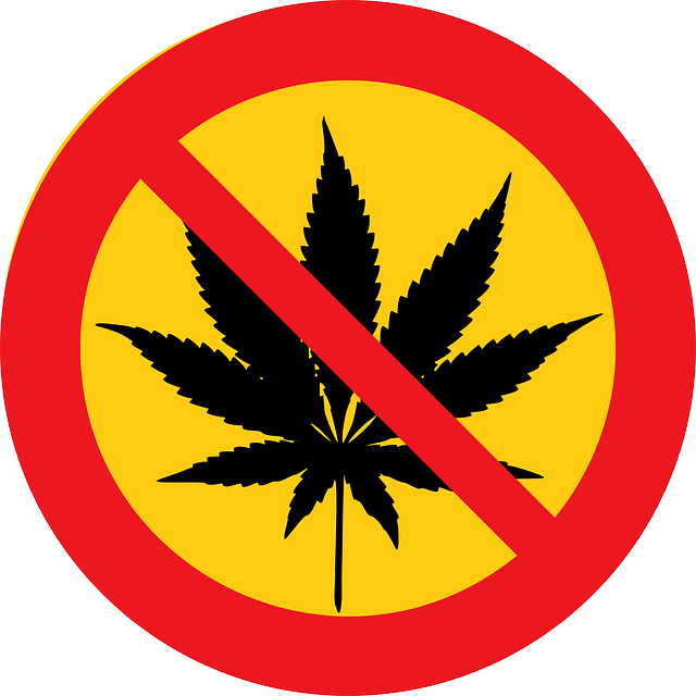 Cannabis Marihuana Drugs - Free vector graphic on Pixabay (149125)