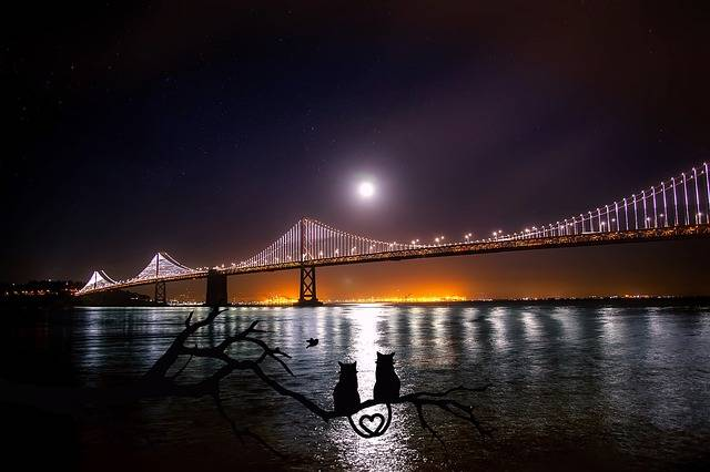 San Francisco Oakland Bay Bridge - Free photo on Pixabay (153782)