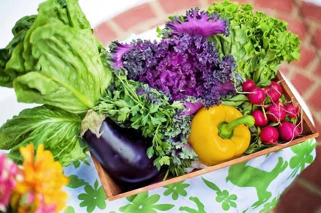 Vegetables Garden Harvest - Free photo on Pixabay (154283)