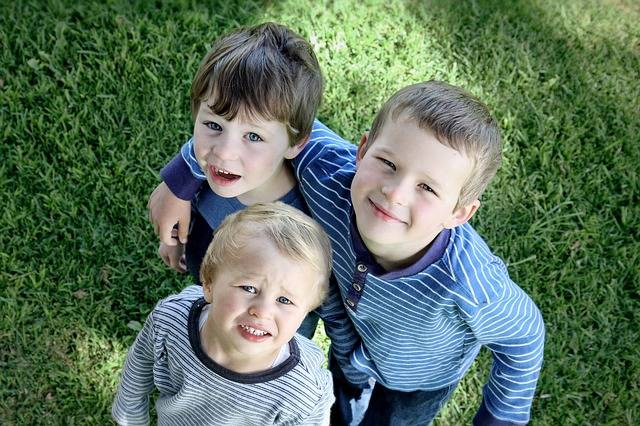 Brothers Boys Children Look - Free photo on Pixabay (155534)