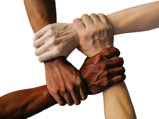 Hand United Together - Free photo on Pixabay (156154)