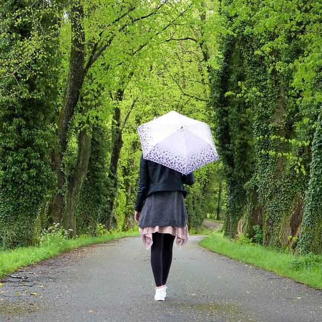 Young Woman Girl Umbrella - Free photo on Pixabay (157454)