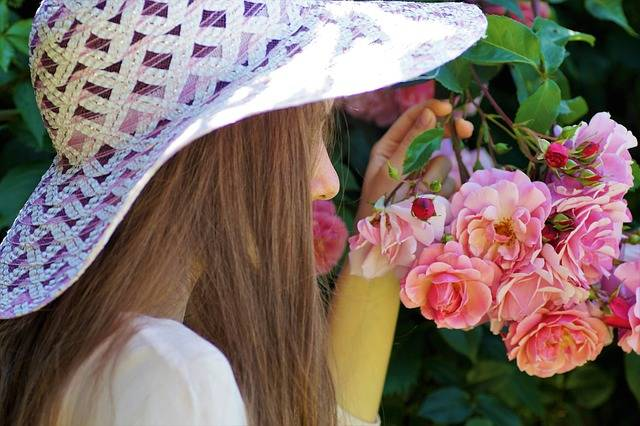 The Girl In Hat Rose - Free photo on Pixabay (159882)
