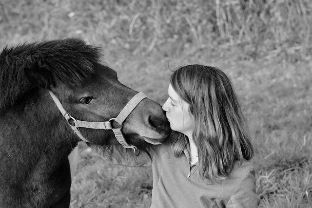 Kisses Kiss Girl Pony Tenderness - Free photo on Pixabay (162512)