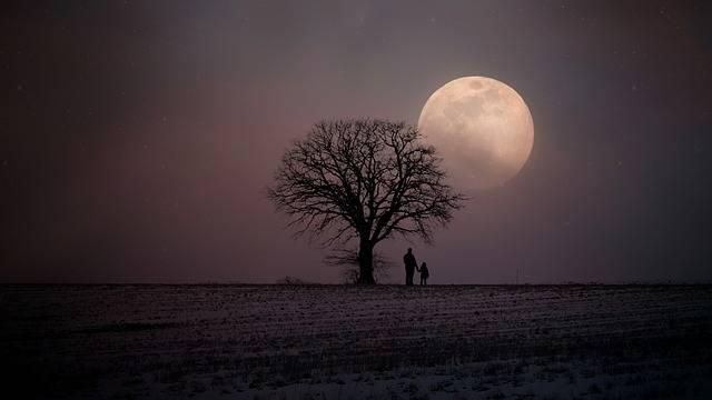 Winter Wintry Moon - Free photo on Pixabay (165378)