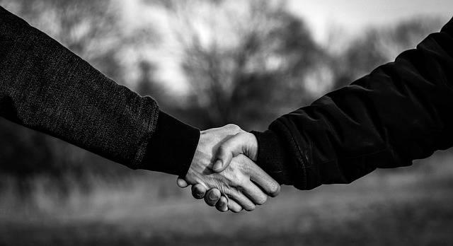 Handshake Shaking Hands - Free photo on Pixabay (165500)