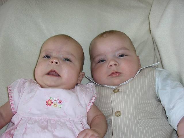 Twins Babies Siblings - Free photo on Pixabay (166249)