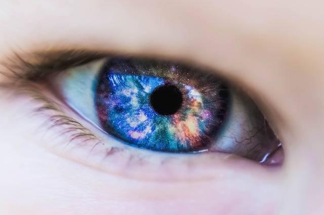 Beautiful Close-Up Color - Free photo on Pixabay (168280)