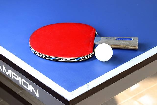 Table Tennis Sport Games - Free photo on Pixabay (168975)