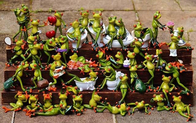 Frogs Many Frog Assembly - Free photo on Pixabay (172716)