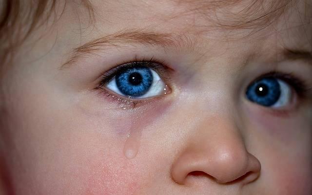 Children'S Eyes Blue Eye - Free photo on Pixabay (172864)
