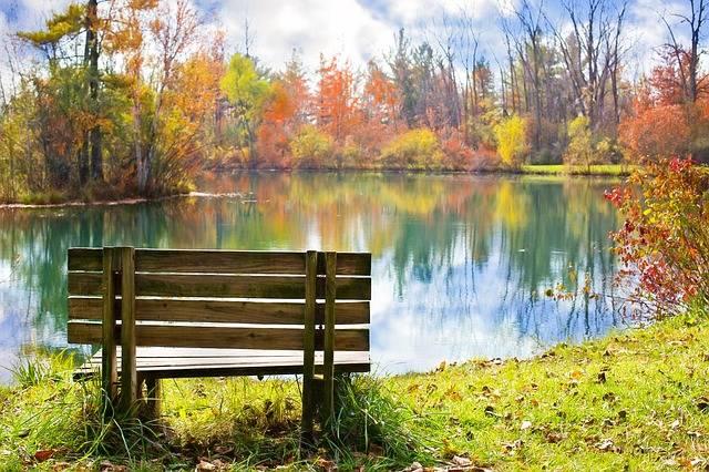 Wood Bench Pond Autumn - Free photo on Pixabay (174130)