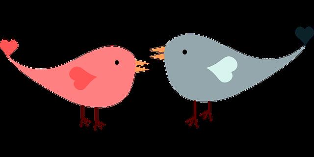 Love Birds Lovebirds - Free vector graphic on Pixabay (175041)