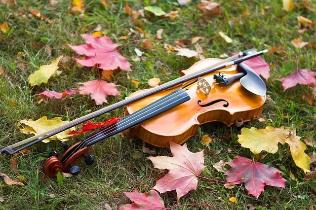 Autumn Violin Musical Instrument - Free photo on Pixabay (176462)