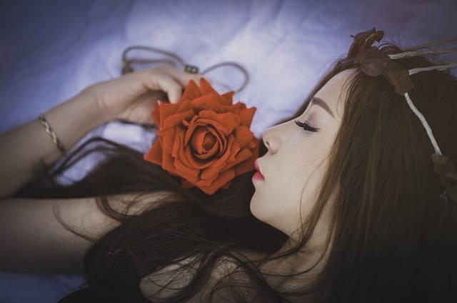 Girl Sleep Female - Free photo on Pixabay (179365)