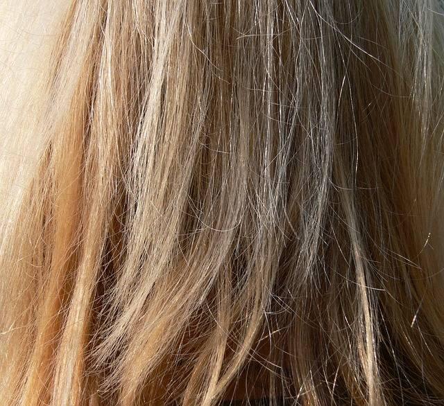 Hair Blond Long - Free photo on Pixabay (181539)