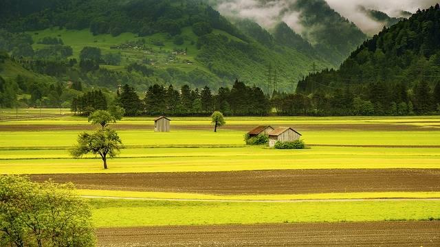 Landscape Meadow Field - Free photo on Pixabay (185046)