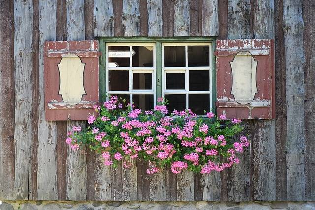 Window Sill Flowers - Free photo on Pixabay (186684)