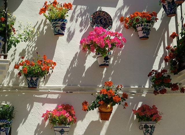 Spain Andalusia Floral Walls - Free photo on Pixabay (187133)