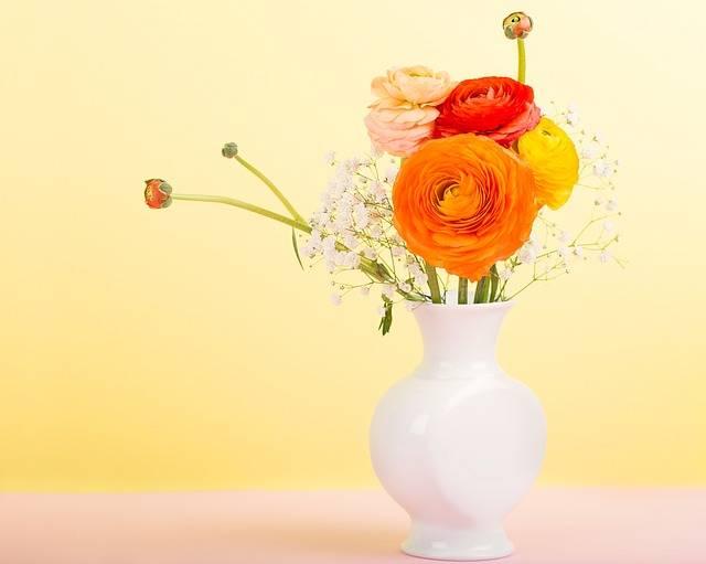 Flowers Flower Vase Ranunculus - Free photo on Pixabay (187658)