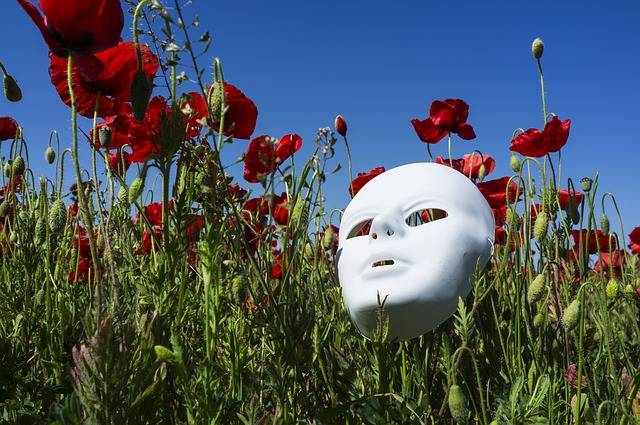 Mask Poppies Field - Free photo on Pixabay (188940)