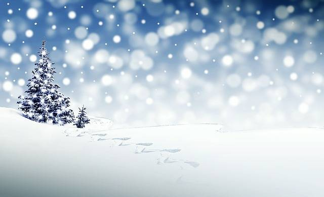 Christmas Snow Winter - Free image on Pixabay (191075)