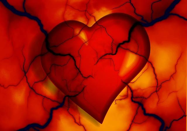 Heart Medical Health - Free image on Pixabay (194097)