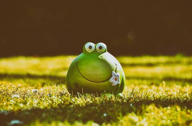 Frog Figure Meadow - Free photo on Pixabay (201518)