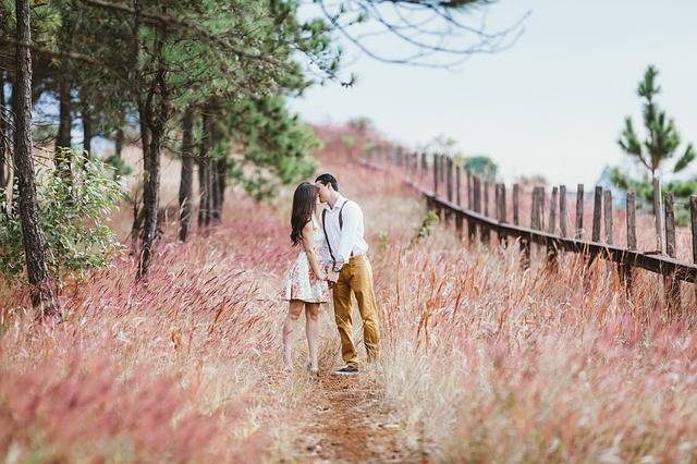 Couple Kissing Marriage Retro - Free photo on Pixabay (202011)