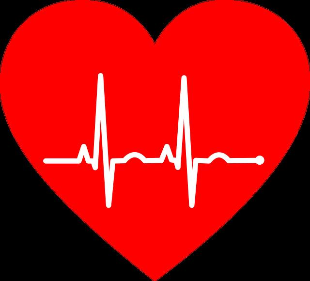 Ekg Electrocardiogram Heart - Free vector graphic on Pixabay (203088)