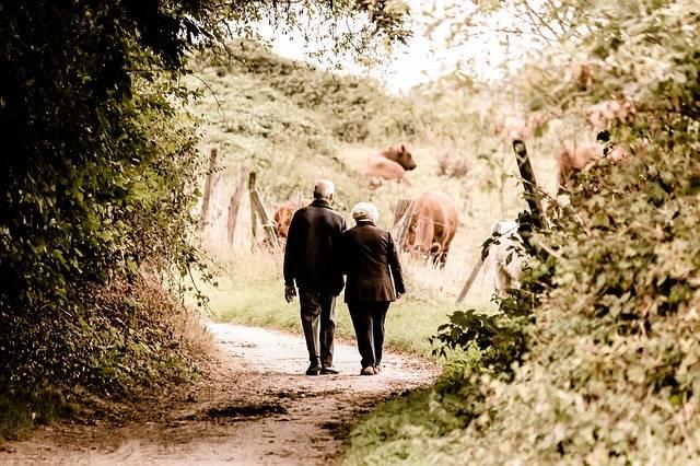 Pair Seniors Pensioners - Free photo on Pixabay (203471)