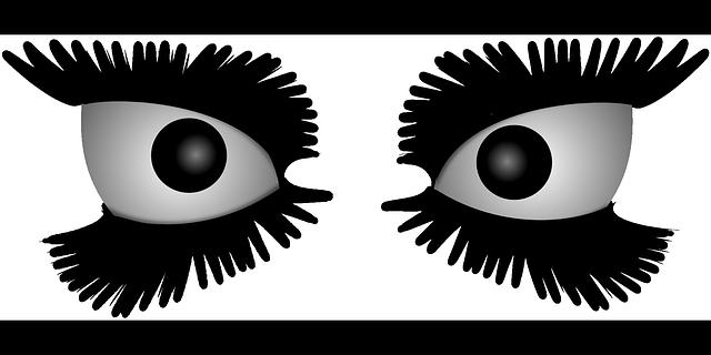 Eyes Eyelashes Crazy - Free vector graphic on Pixabay (203671)