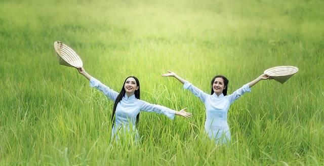 Woman Rice Green - Free photo on Pixabay (206065)