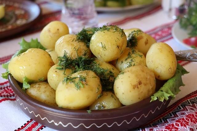 Ukraine Potatoes Dill - Free photo on Pixabay (213087)