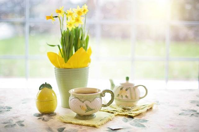Daffodils Tea Time Cup Of - Free photo on Pixabay (243801)