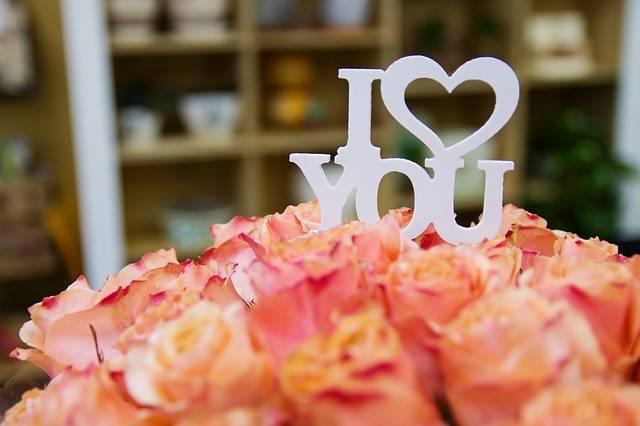 Rose Roses Flower - Free photo on Pixabay (243853)