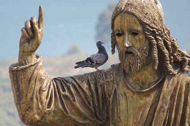 Israel Jesus Bird - Free photo on Pixabay (246736)